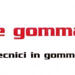 aerregomma logo